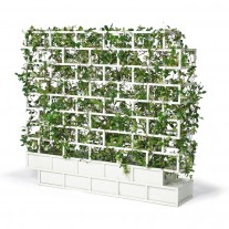 greenwall_light_greenline-nautinox-living