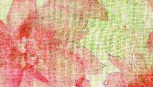 aquarelle-1189