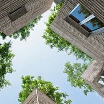 house for trees por vo trong nghia architects