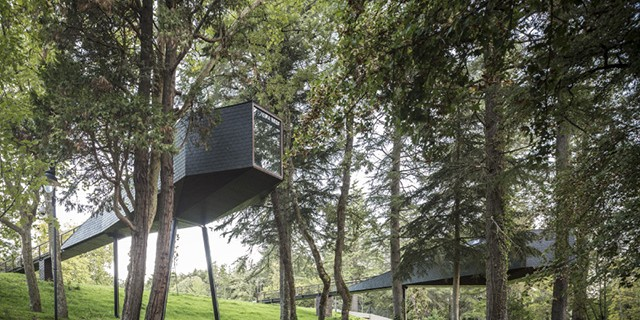tree-snake-houses-rebelo-de-andrade