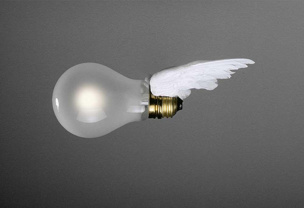 lucellino_bulb