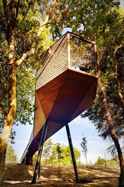 tree snake house 2
