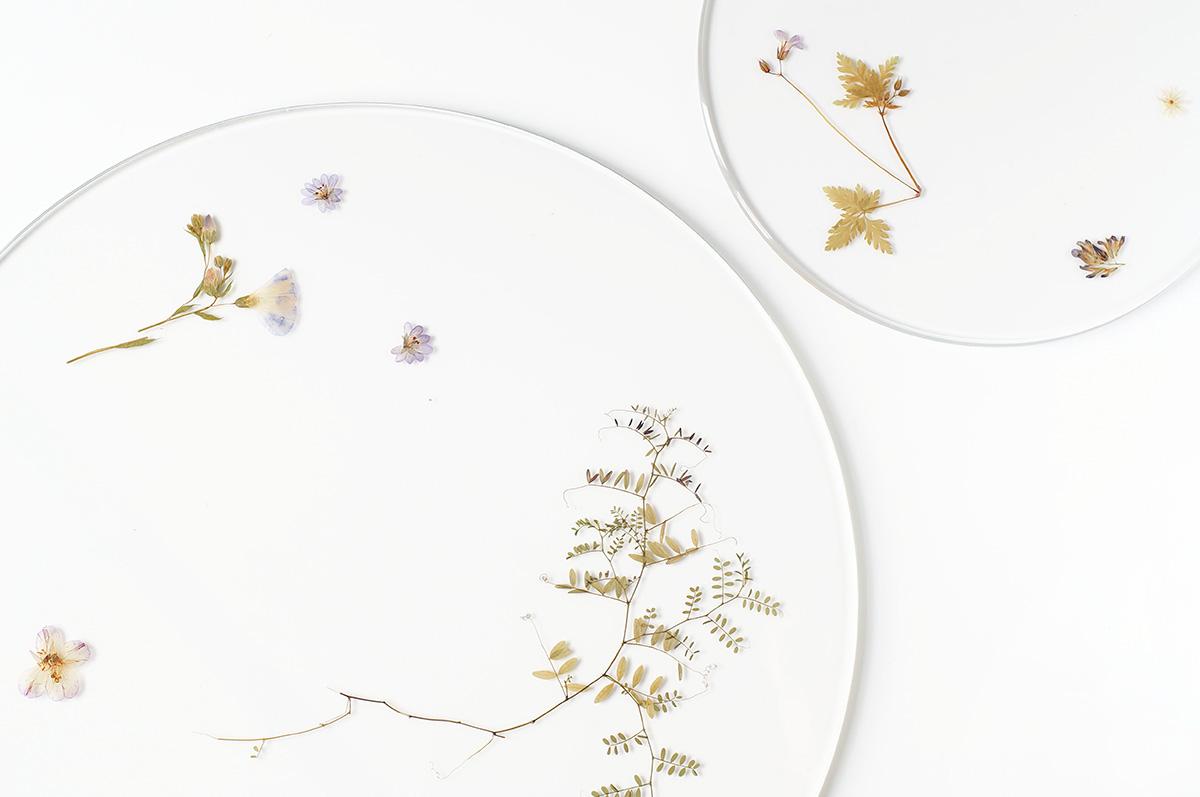 04-evergreen-platters-meike-harde01