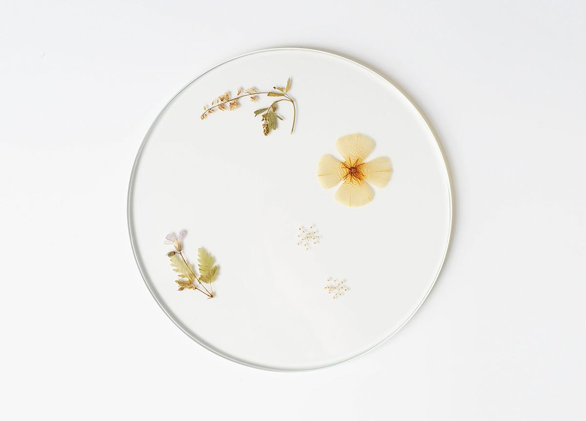 06-evergreen-platters-meike-harde01