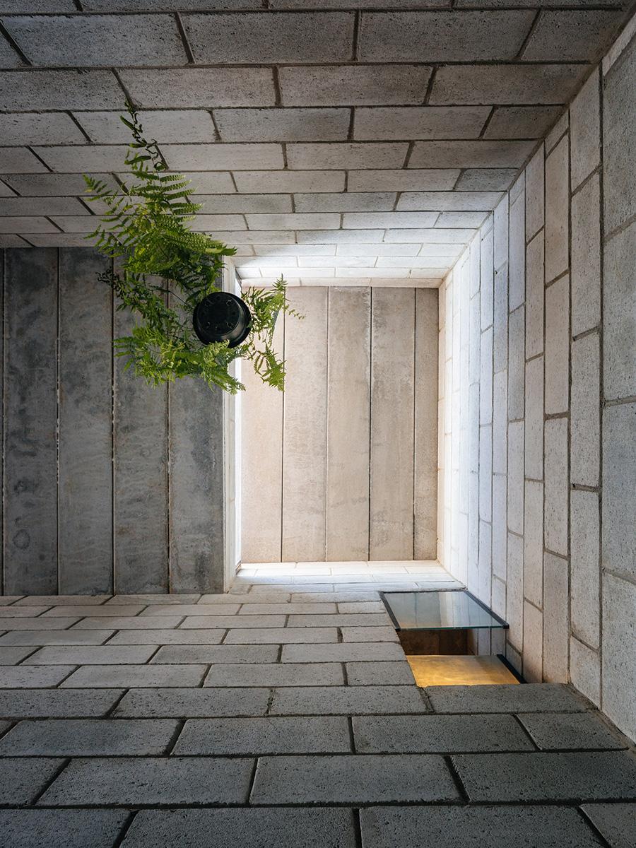 09-casa-vila-matilde-terra-e-tuma-arquitetos-photo-pedro-kok
