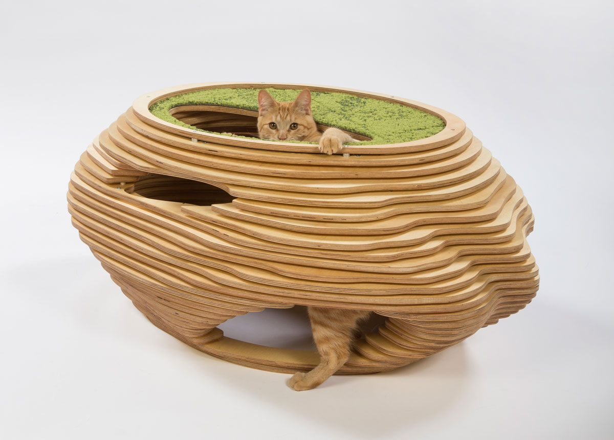 01-abramson-teiger-architects-cat-shelter
