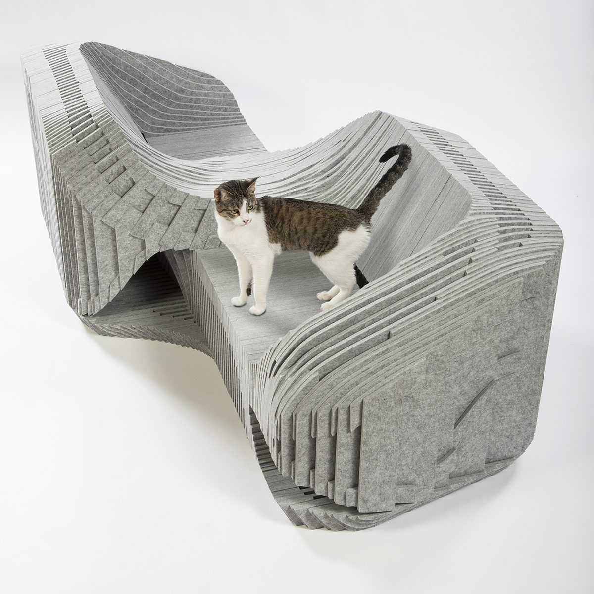 02-formation-association-arktura-burohappold-cat-shelter