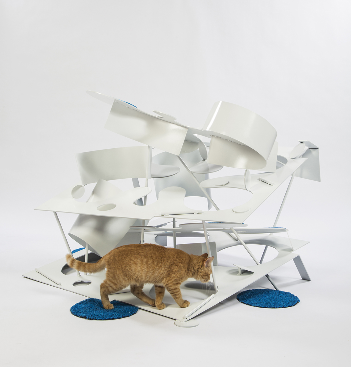 05-lehrer-architects-cat-shelter