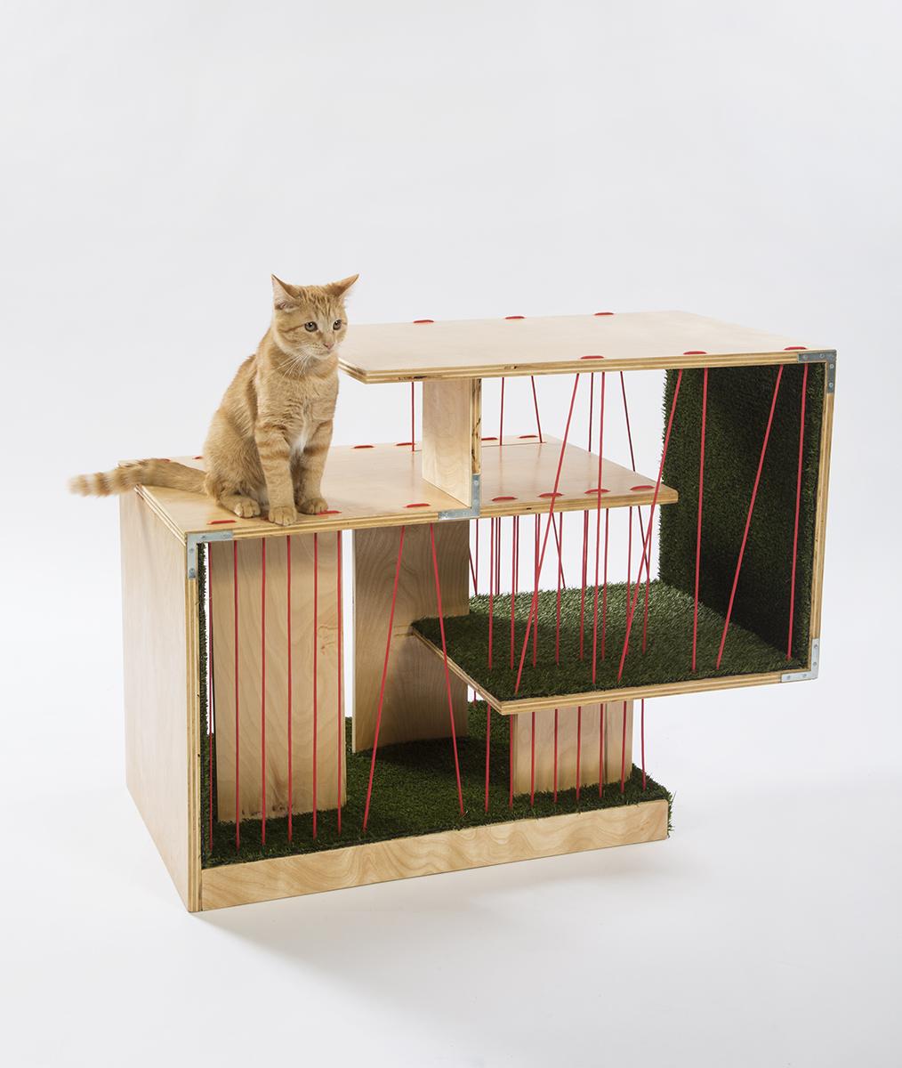 07-rnl-cat-shelter