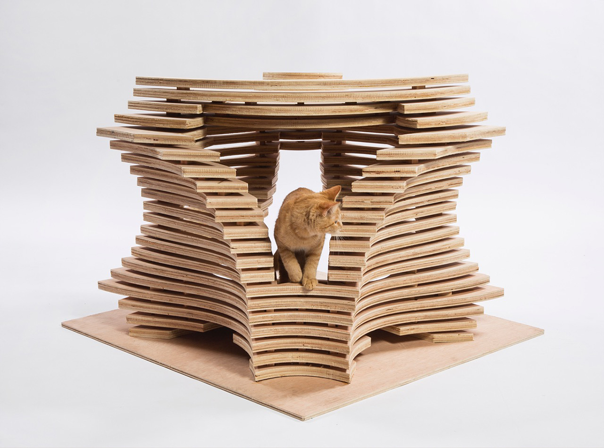 11-callisonRTKL-cat-shelter