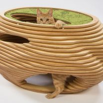 13-abramson-teiger-architects-cat-shelter