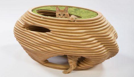 13-abramson-teiger-architects-cat-shelter