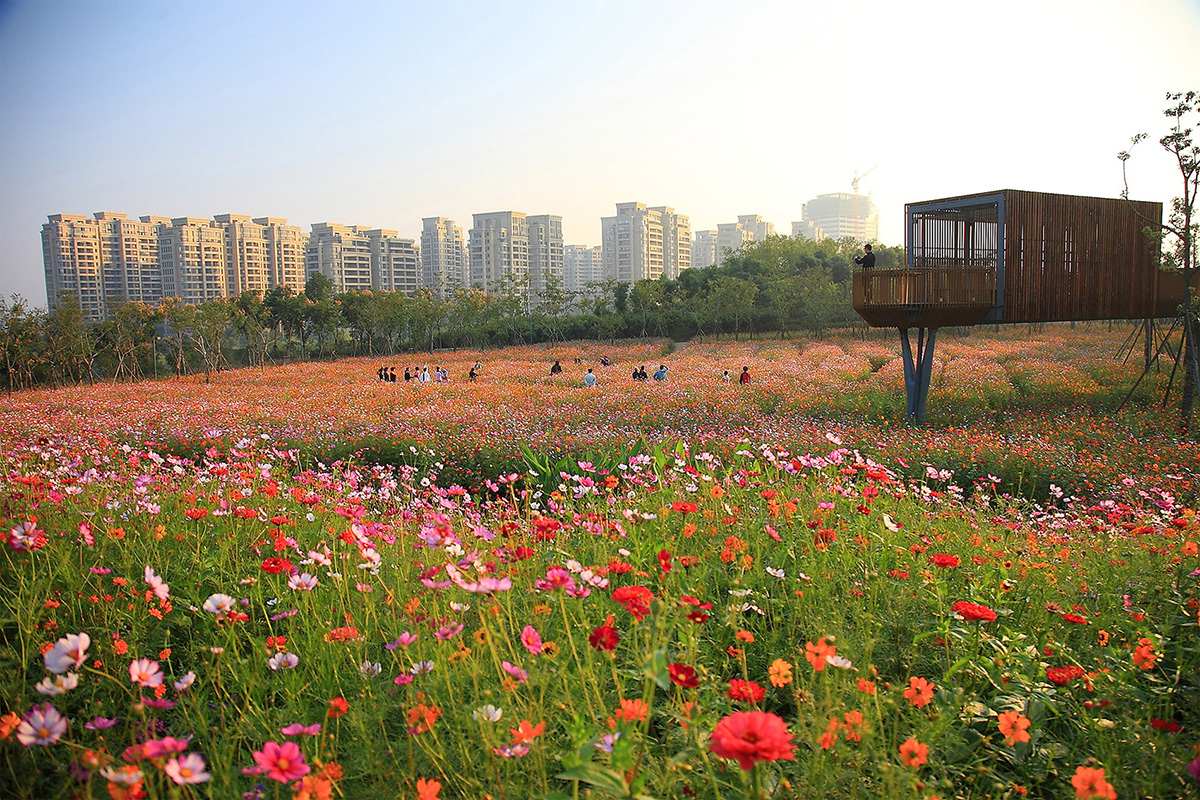 04-quzhou-luming-park-por-turenscape