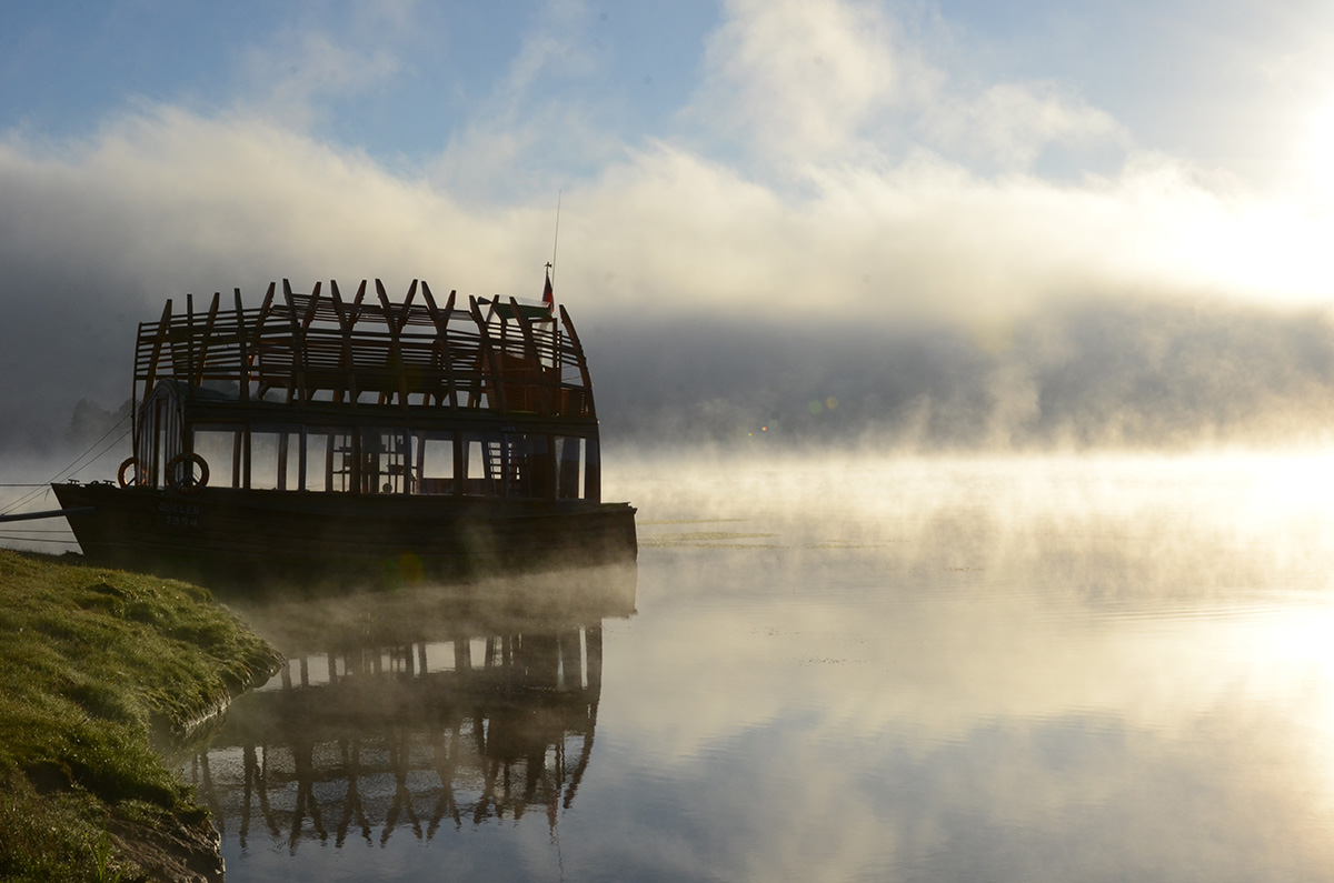 01-arquitectura-chilena-arca-quelen-susana-herrera-factoria