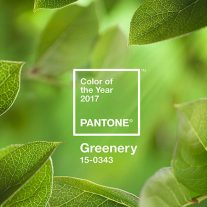 05-verde-greenery-color-pantone-2017