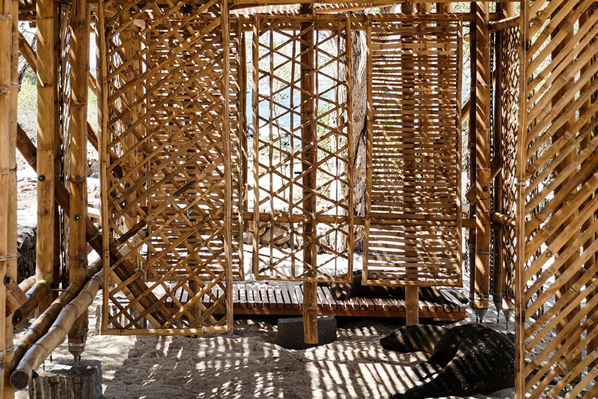 03-refugio-playa-man-the-scarcity-and-creativity-studio