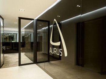 01-arquitectura-chilena-aurus-albert-tidy-arquitectos