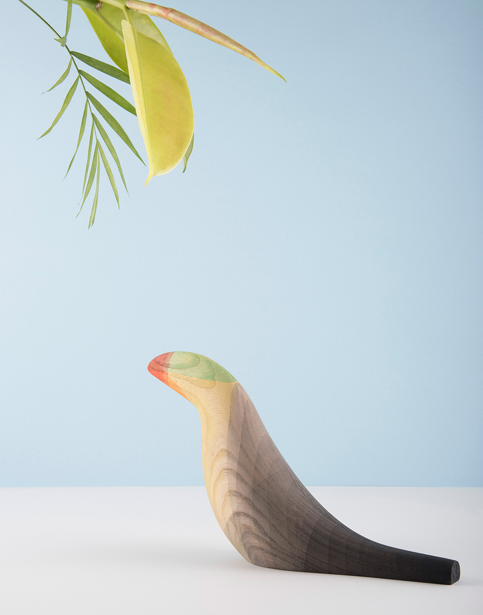 03-inmersed-birds-moises-hernandez