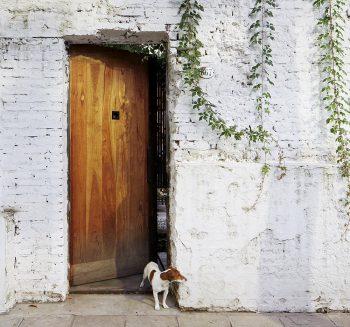 01-casa-clara-teresa-sarmiento-nicolas-tovo-foto-cristobal-palma