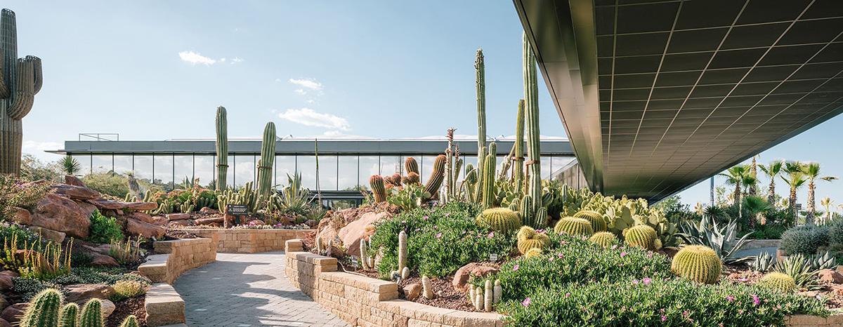02-desert-city-garciagerman-arquitectos-foto-miguel-de-guzman