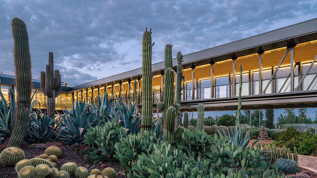 08-desert-city-garciagerman-arquitectos-foto-miguel-de-guzman