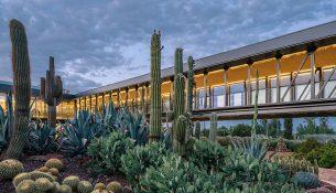 12-desert-city-garciagerman-arquitectos-foto-miguel-de-guzman