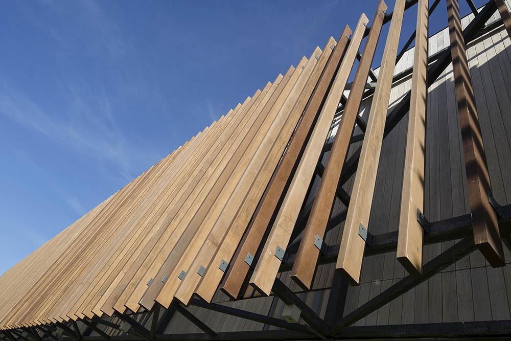 07-arquitectura-chilena-campus-arauco-gdn-foto-aryeh-kornfeld