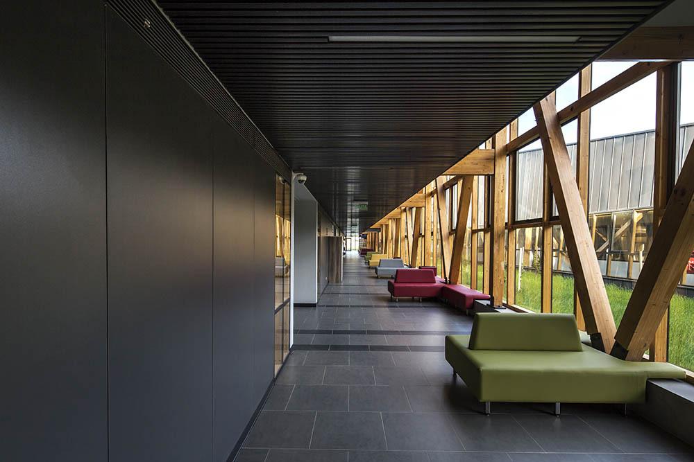08-arquitectura-chilena-campus-arauco-gdn-foto-aryeh-kornfeld