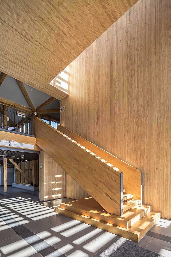 11-arquitectura-chilena-campus-arauco-gdn-foto-aryeh-kornfeld