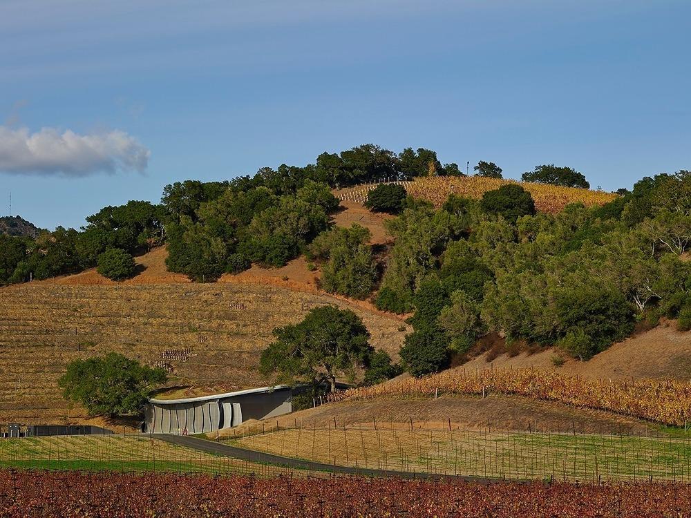 02-odette-estate-winery-signum-architecture