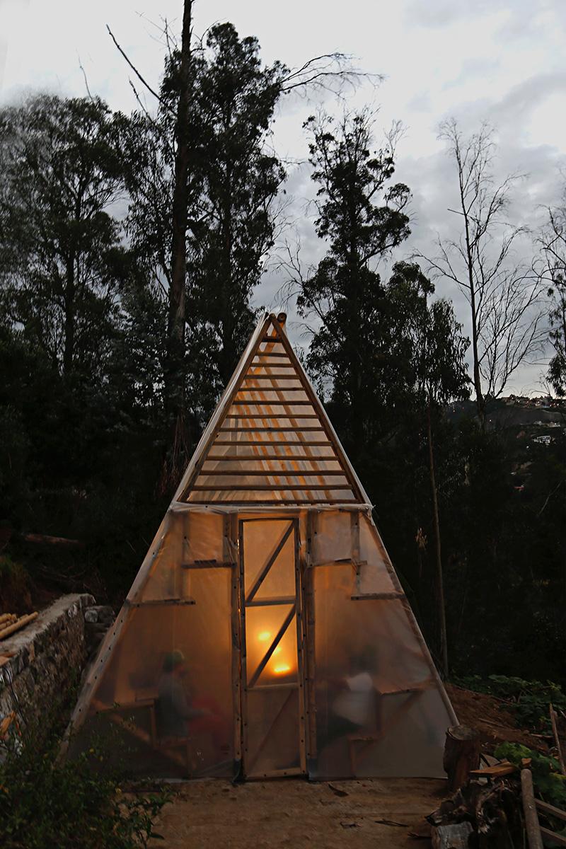 03-el-triangulo-de-las-verduras-natura-futura