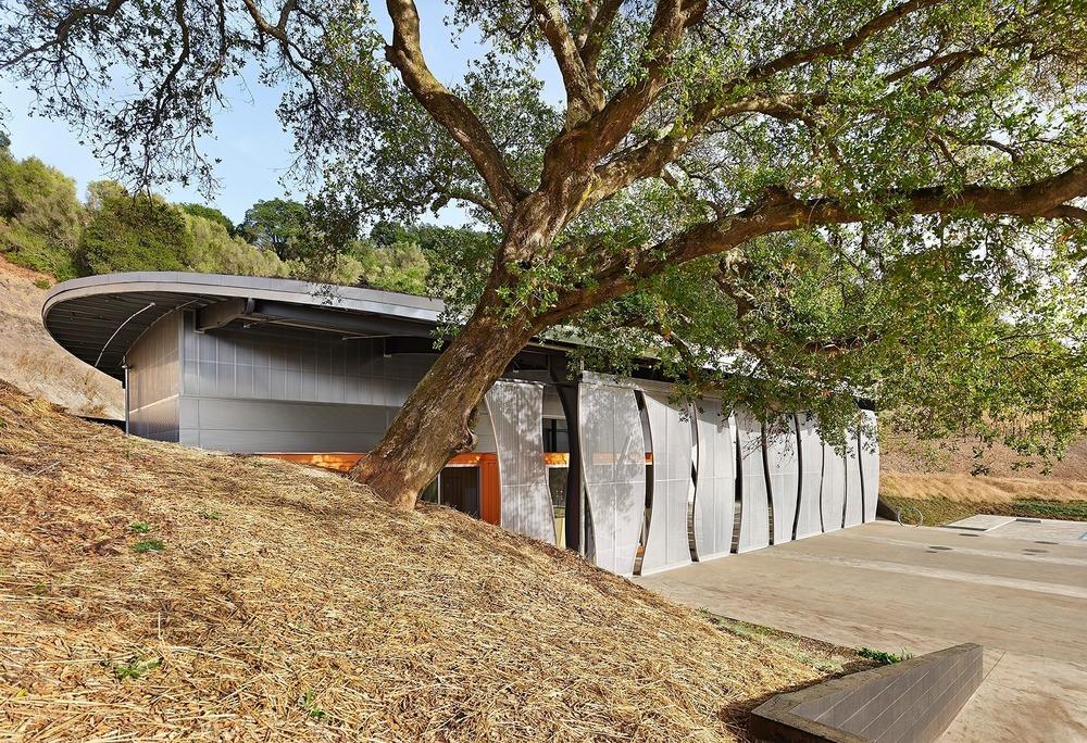 04-odette-estate-winery-signum-architecture