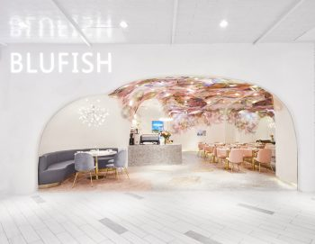 01-blufish-soda-architects