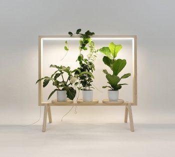 01-limbus-greenframe-kauppi-kauppi
