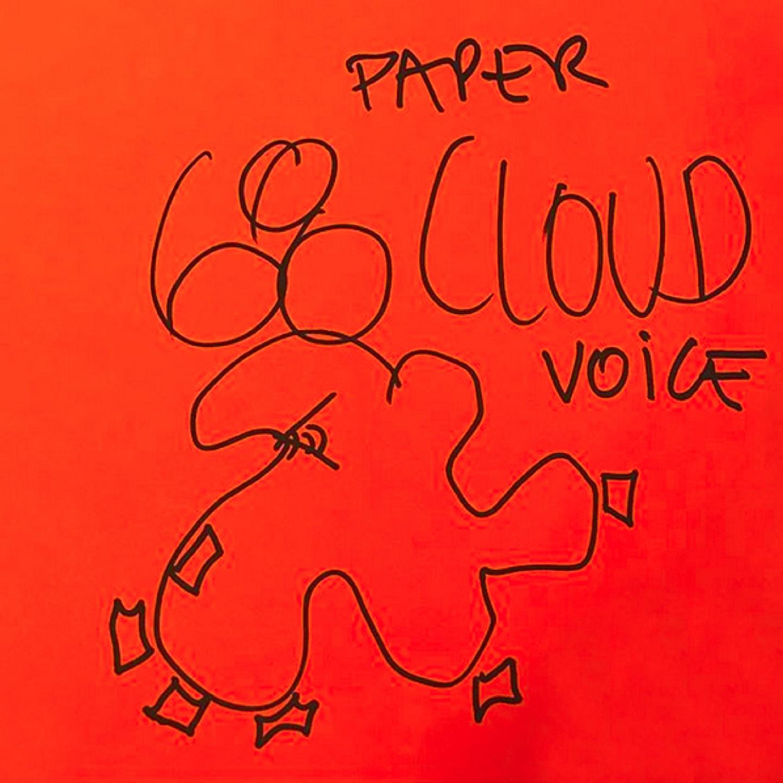 2_Cloud68-Paper-Voice-por-Smiljan-Radic-y-Patricio-Mardones