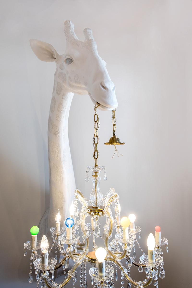 Iluminación Intuitiva por Marcantonio