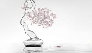 Simone Crestani: Bonsai Sakura
