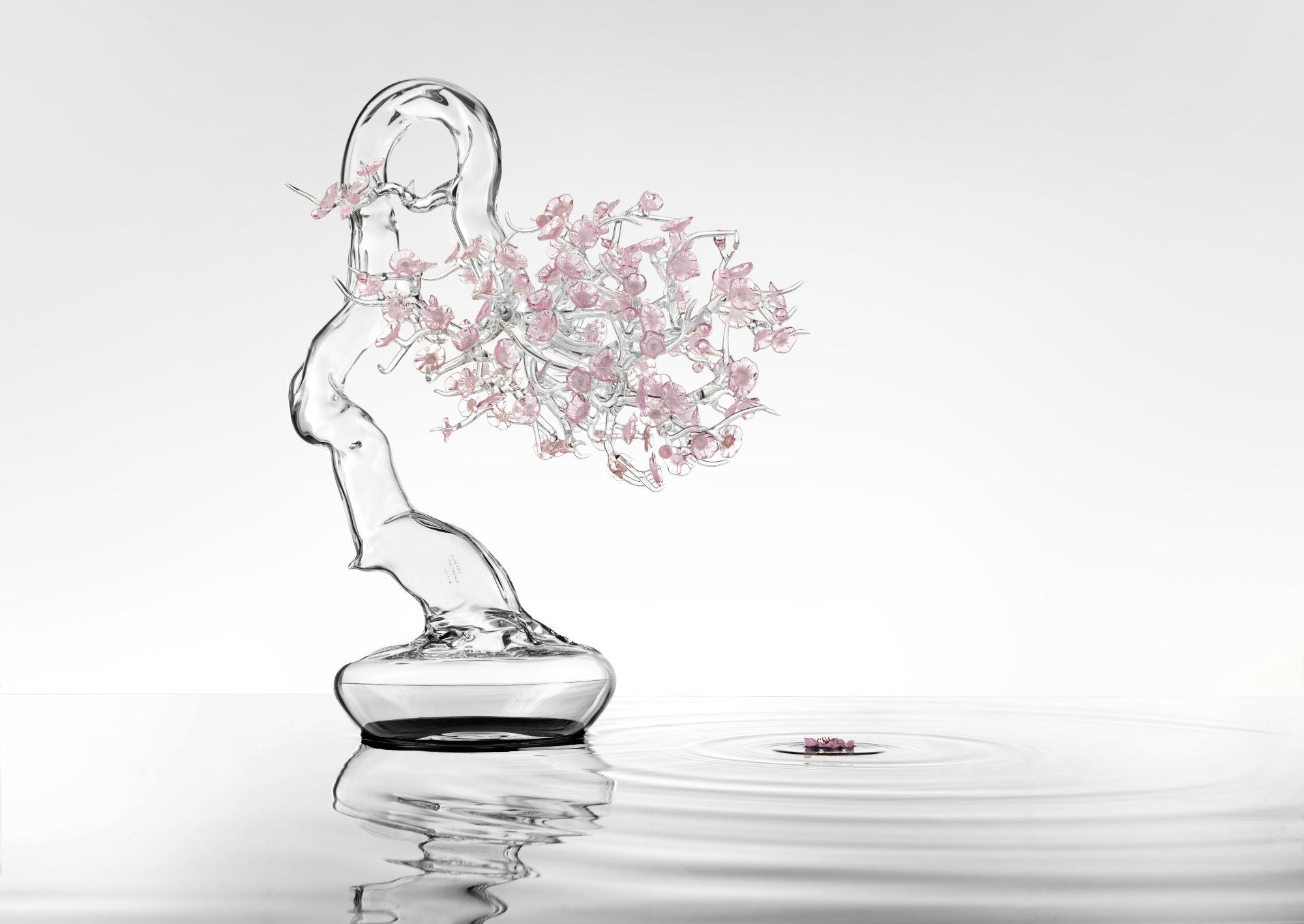 Simone_Crestani_bonsai_Sakira (2)