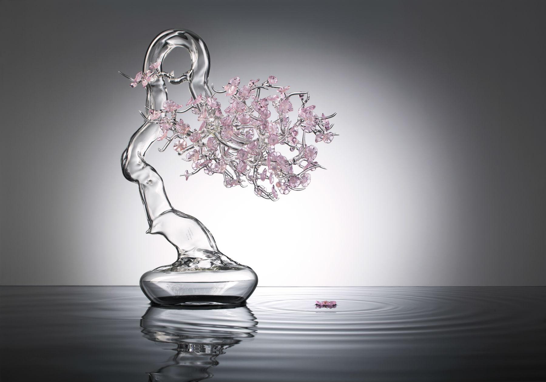 Simone_Crestani_bonsai_Sakura (1)