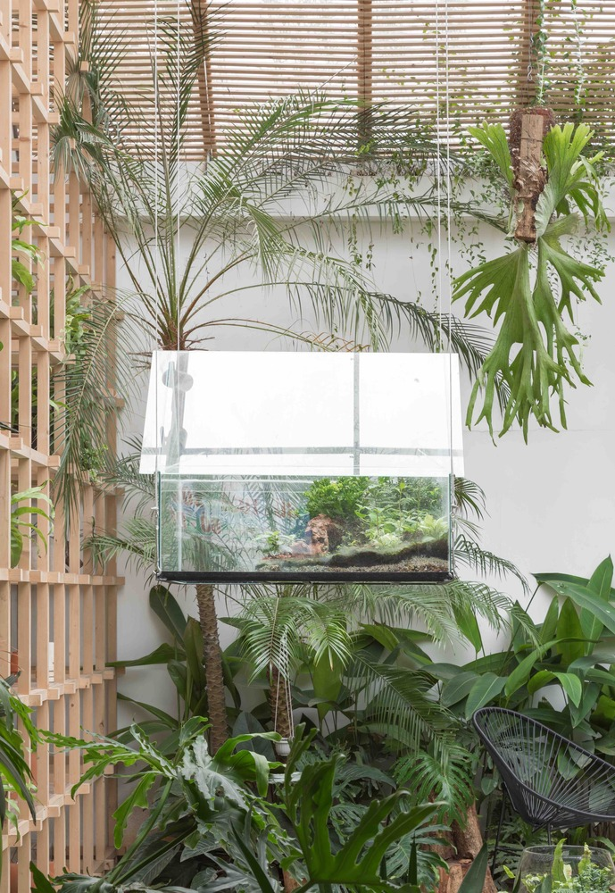 Tropical-forest-Tayone-Design-Studio-Nguyen Thai-Thach-05