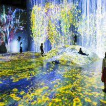 borderless- teamlab-3