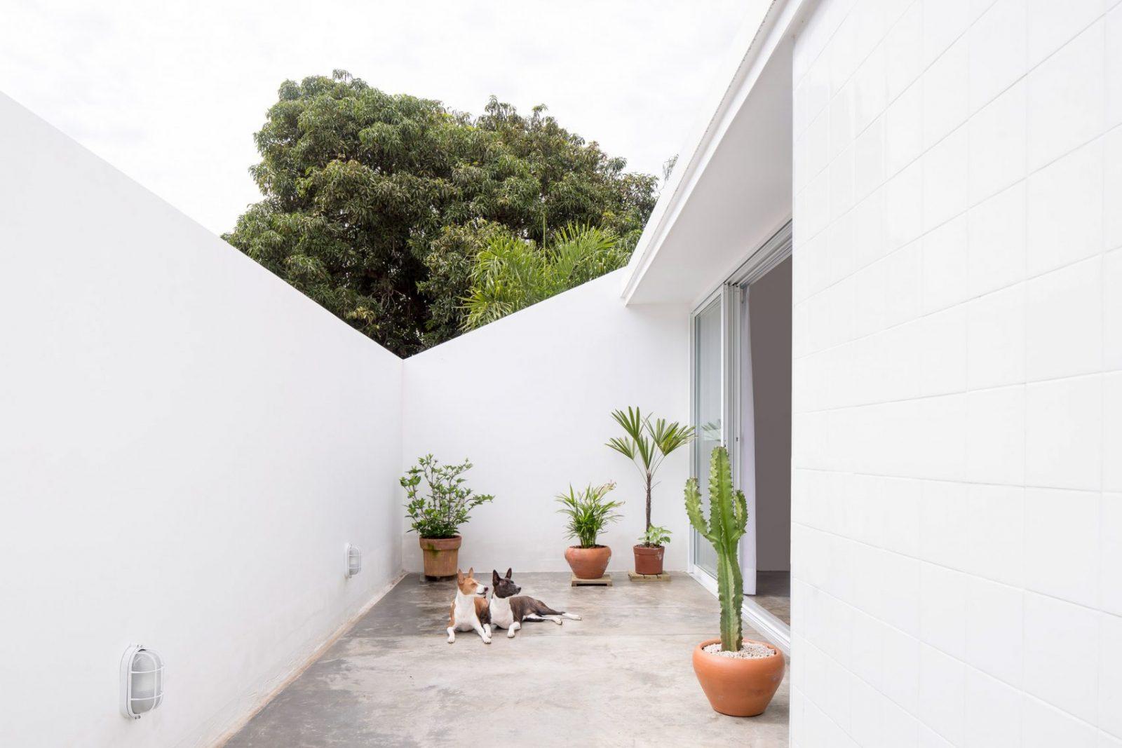 casa-711h-bloco-arquitetos-Joana-Franca-04-1600x1067