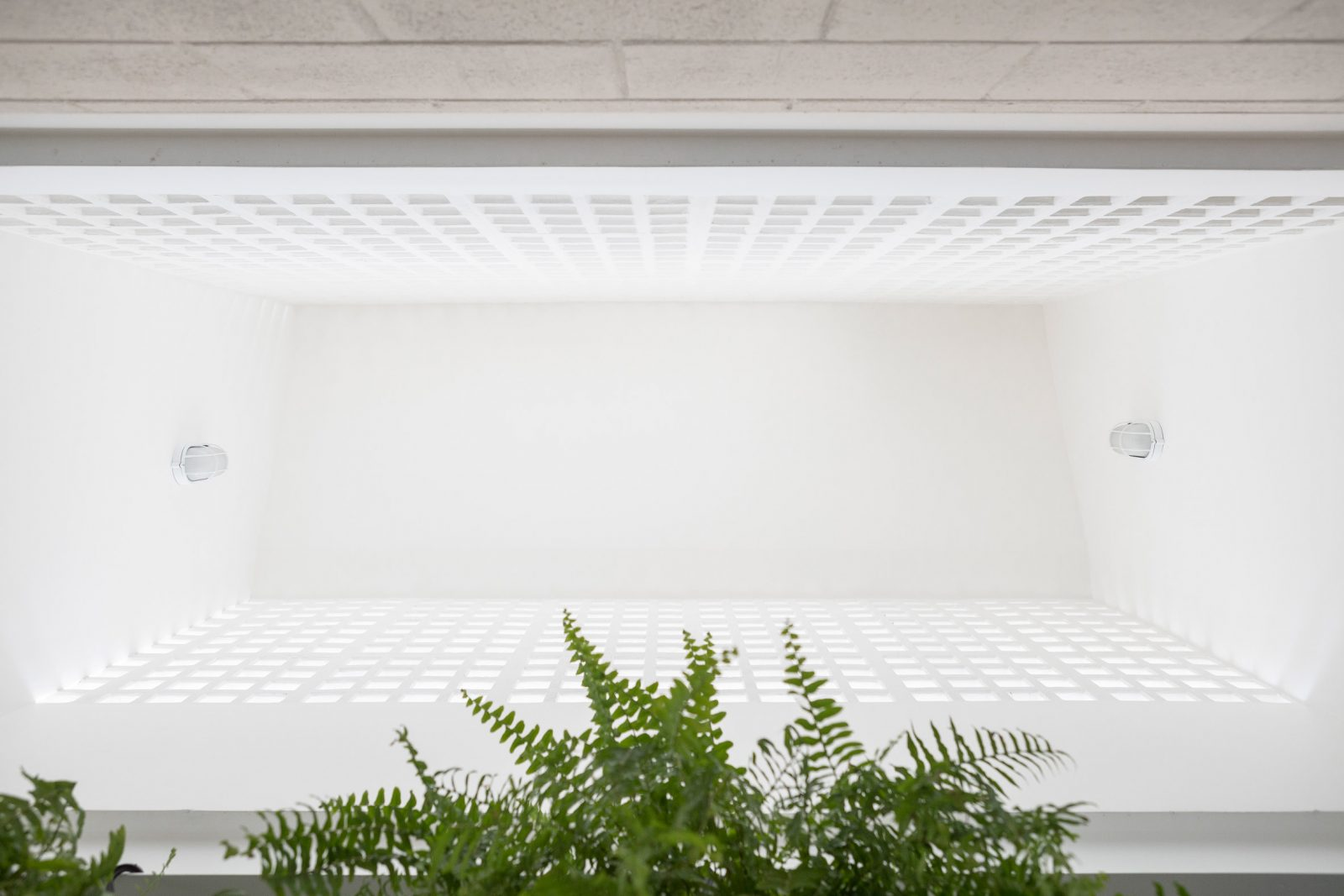 casa-711h-bloco-arquitetos-Joana-Franca-06jpg-1600x1067