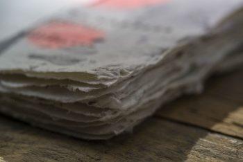 Bee-Saving-Paper-Saatchi-Saatchi-Filip Zolynski-03