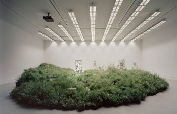 Grasslands-Repair-Pabellon-Australia-Venecia-Baracco-Wright-Rory-Gardiner-01