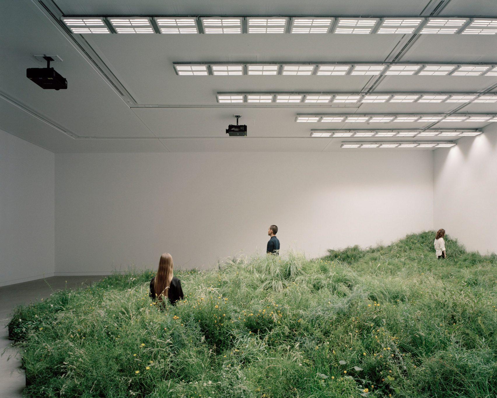 Grasslands-Repair-Pabellon-Australia-Venecia-Baracco-Wright-Rory-Gardiner-PRINCIPAL