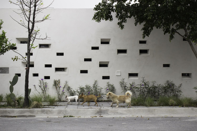 casa-papagayo-Ariel Valenzuela-Diego Ledesma-03