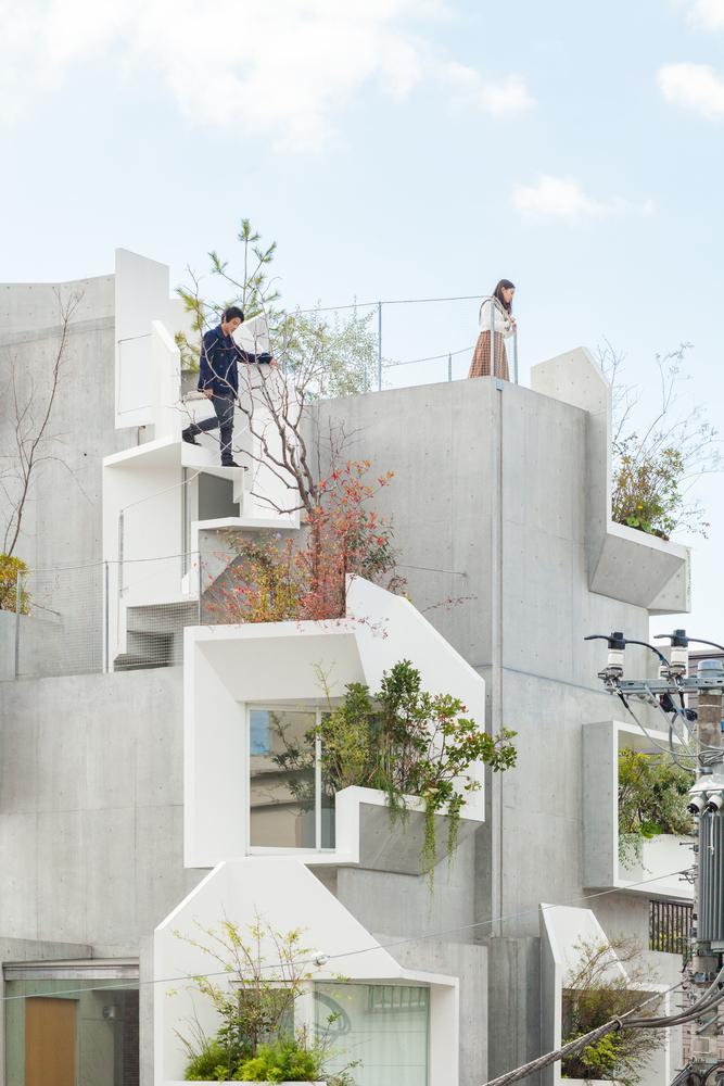 tree-ness-house-akihisa-hirata-Vincent-Hecht-03