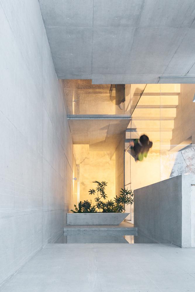tree-ness-house-akihisa-hirata-Vincent-Hecht-06