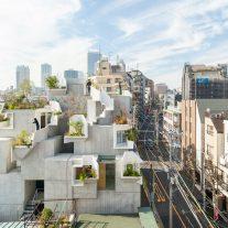 tree-ness-house-akihisa-hirata-Vincent-Hecht-PRINCIPAL